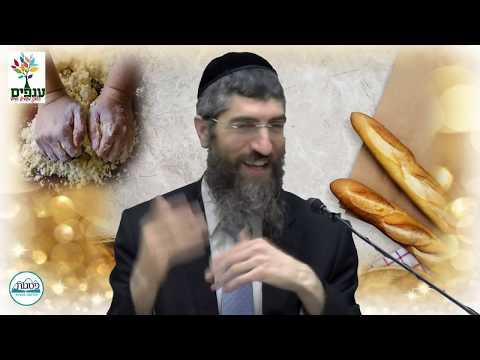 טבילת כלים והפרשת חלה - הרב יצחק יוסף (הנכד) HD
