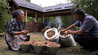 Harvesting Hazelnuts and Making Hazelnut Butter, Outdoor Cooking