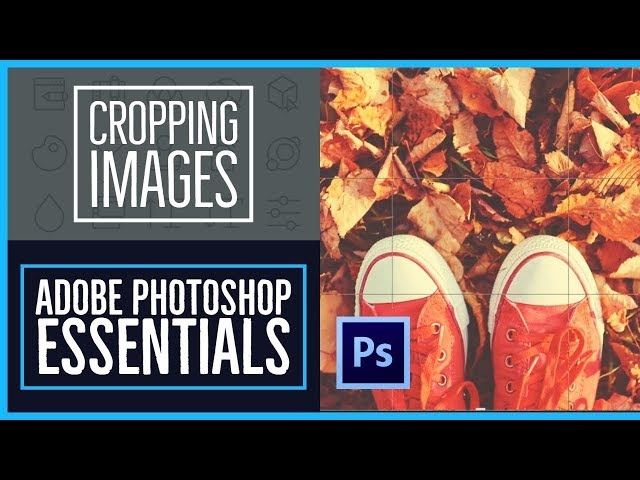 How to crop an image in Adobe Photoshop CC - Photoshop CC Essentials [22/86]