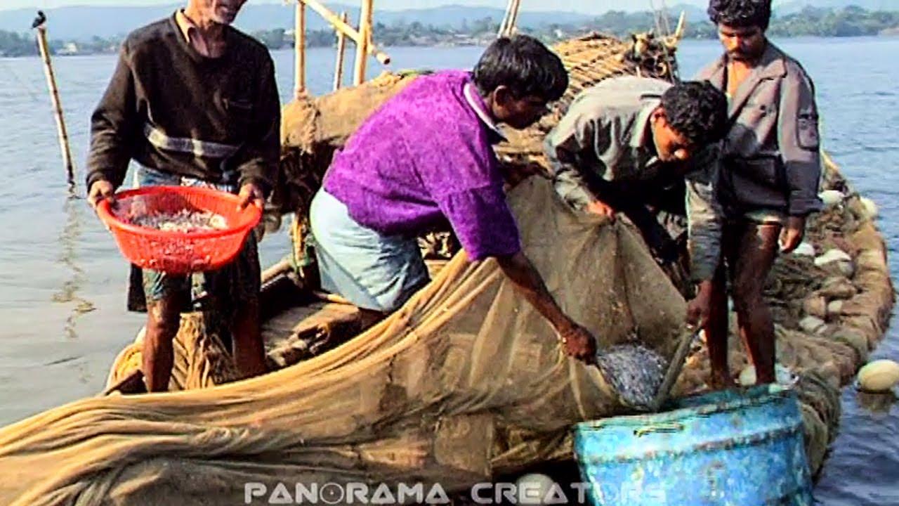 রাঙামাটির কাপ্তাই লেকে জেলেদের মাছ ধরা