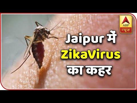 rajasthan:-61-zika-virus-cases-detected-|-abp-news
