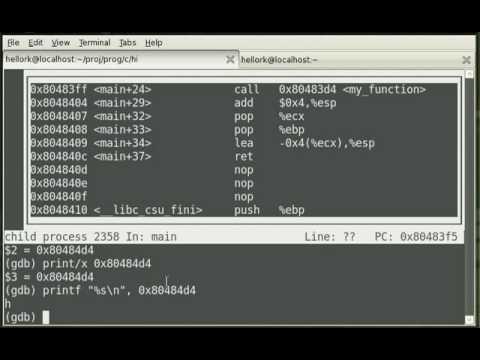 C Programming, Disassembly, Debugging, Linux, GDB