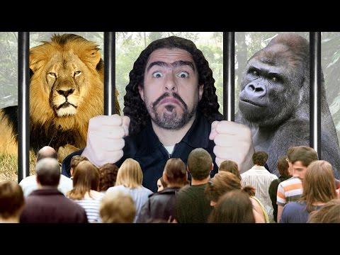 O dilema dos zoológicos (#Pirula 162)