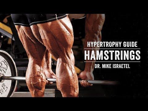 Hypertrophy Guide | Hamstrings | JTSstrength.com