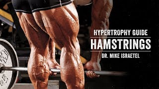 Hypertrophy Guide | Hamstrings | JTSstrength.com thumbnail