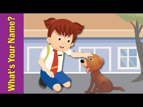 What's Your Name? Song for Kids | Kindergarten, Preschool & ESL | Fun Kids English