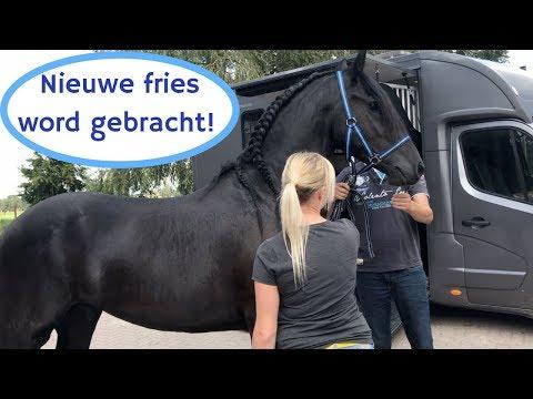 Mijn nieuwe paard word gebracht!! JEEEEEJJJ :D