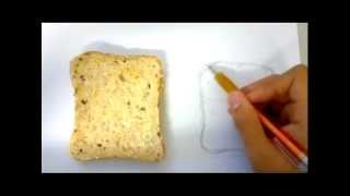 Amazing Time Lapse Painting of Bread