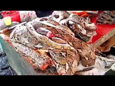 """Wuhan Coronavirus - China's """"Fresh"""" kills, not so """"FRESH""""!"""