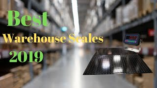 5 Best Scales for Warehouses