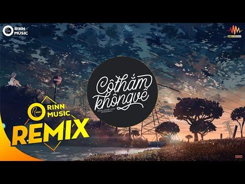 Cô Thắm Không Về (DinhLong Remix) - Phát Hồ x JokeS Bii x Sinike   Nhạc Trẻ TikTok Gây Nghiện 2019