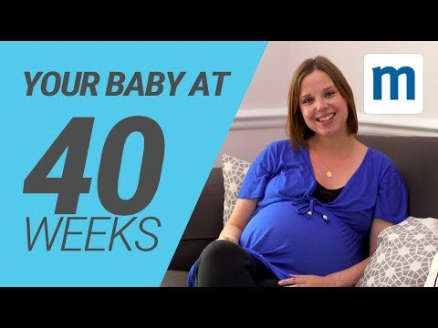 40 Days Pregnant Your Child, The Body, and much more