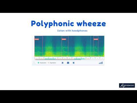 Lung sounds - polyphonic wheeze