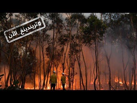 صدمة على مواقع التواصل الاجتماعي من حجم حرائق أستراليا  - 19:00-2019 / 12 / 7