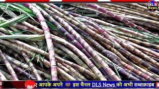 shiksha mitra Breaking news : shiksha mitra good news : shiksha mitra latest newy