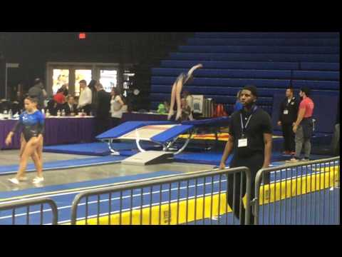 Sydney Marin Banks Level 8 Double Mini Greensboro, NC 2017