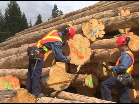 Pioneer Log Homes Of Bc 2012 20 Minute Introduction Part 1 Youtube