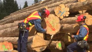 Pioneer Log Homes of BC 2012, 20 Minute Introduction (Part 1)