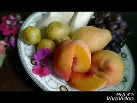 Art Cuisine -Azerbaijan (Ira