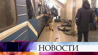 Спецслужбы: Теракт впетербургском метро предположительно совершил террорист-одиночка.