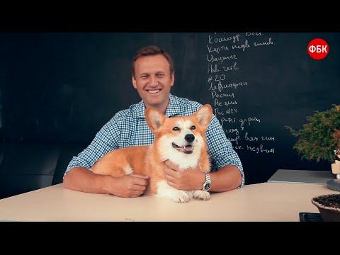 Собаки вице-премьера Шувалова