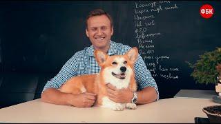 Собаки вице-премьера Шувалова летают на частном самолете