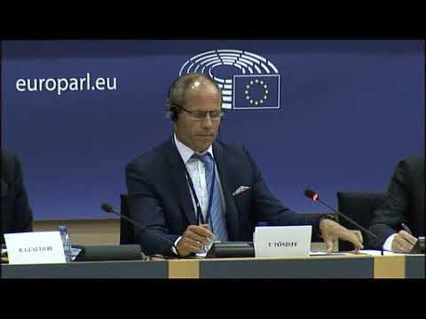 Barbara Kappel - Dialog mit Toomas Tõniste (Finanzminister von Estland)