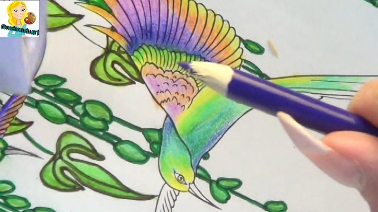 Contemporáneo Alimentador De Colibrí Para Colorear Colorear Bosquejo ...
