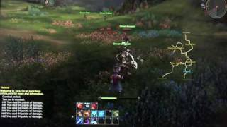 TERA  The Exiled Realm Of Arborea Video Game, SDCC 10  Floor Gameplay (Cam) HD