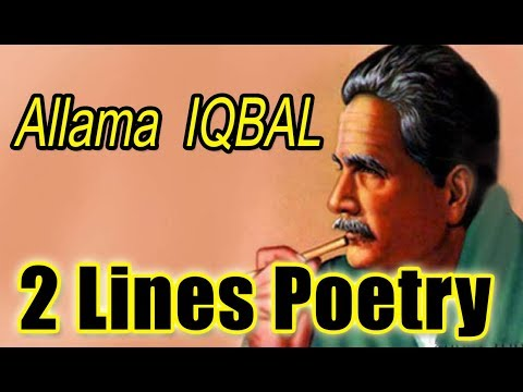 Allama Iqbal Poetry In Urdu || Two Line Sad Poetry || 2 Line Urdu Poetry ||Z S Poetry