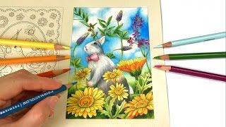 First Day Of Spring 2017 | Menuet De Bonheur Coloring Book By Kanoko Egusa