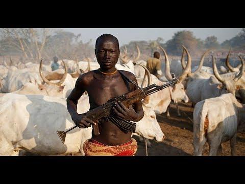 Cattle Colony for Fulani Herdsmen [10 Jan 2018]