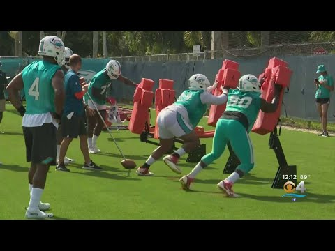 In The Zone - Dolphins Make Multiple Roster Cuts