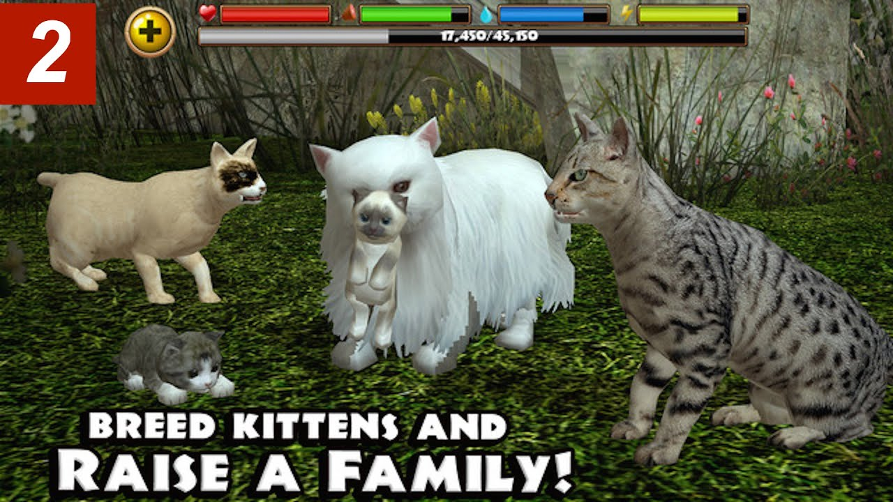 Ultimate Cat Simulator How To Make A Pack