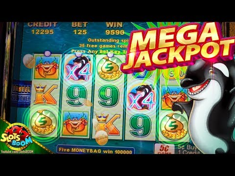 Akafuji Slot Big Win★new Whales Of Cash Deluxe Slot Mac