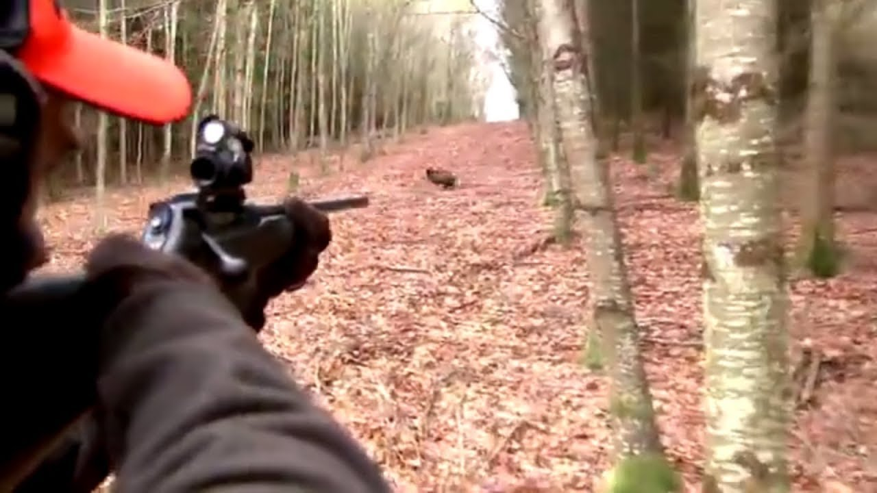Best of wild boar hunting   Top kill shots compilation - Ultimate Hunting