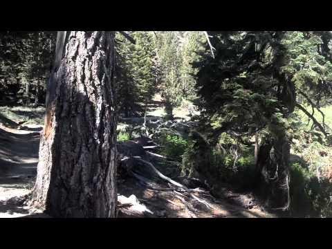 Fish Creek Meadow San Gorgonio Wilderness