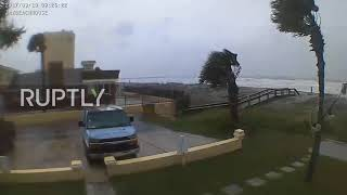 USA: Palm trees bend in the wind as Hurricane Irma strikes Nor…