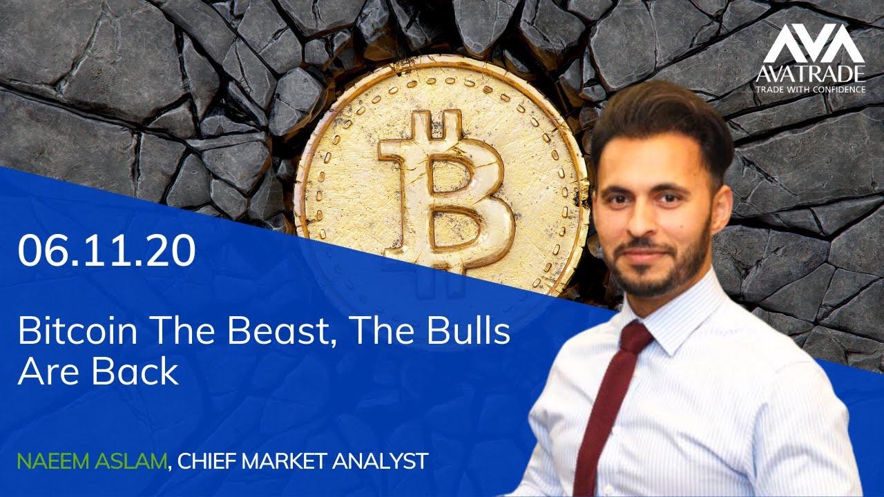 bitcoin beast