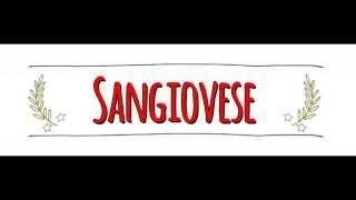 American vs Australian Accent: How to Pronounce SANGIOVESE in an Australian or American Accent
