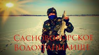 Сосновоборское Водохранилище 2021 Рыбалка на жерлицы Зимняя щука Рыбалка в Беларуси Крупная щука