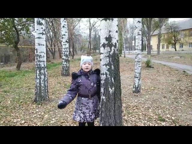 Изображение предпросмотра прочтения – ДарьяМаловичко читает произведение «Берёза» С.А.Есенина