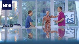 Bluthochdruck, Beinödeme, Beckenverwringung (Folge 5) | Die Bewegungs-Docs | NDR