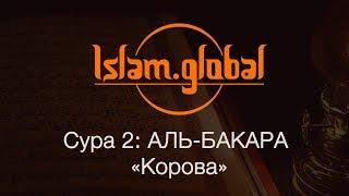 """Сура 2: """"Аль-Бакара"""" (Корова)"""