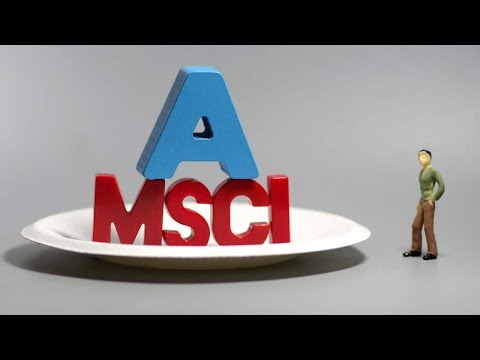 What is the MSCI?
