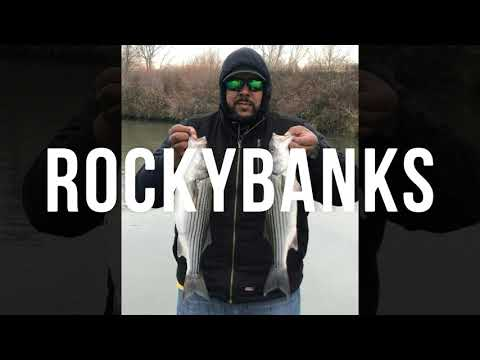 Delta Striper Fishing In The Back Sloughs On Swimbaits MUST SEE!!!