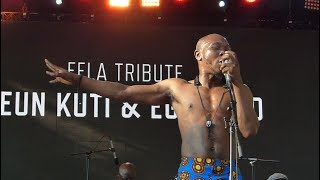 Seun Kuti & Egypt 80, Struggle Sounds, Summerstage, NYC 7-16-17