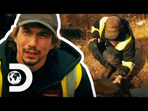 Parker Searches For Gold At A Possible New Mine Site | Season 10 | Gold Rush