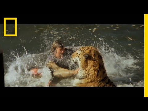 Roar: The Most Dangerous Movie Ever Made | The Strange Truth