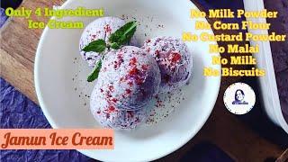 Fresh Fruit Ice cream | How to make Jamun Ice Cream | Black Plum Ice cream recipe | જાબું આઈસ્ક્રીમ